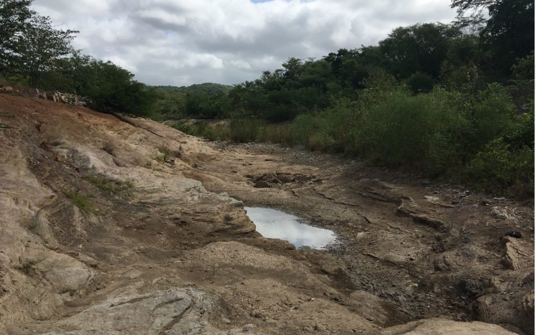 Cerrejón Coal Mine Guajira: Open Letter on Diversion of the Arroyo Bruno and fulfilment of Constitutional Court Sentence