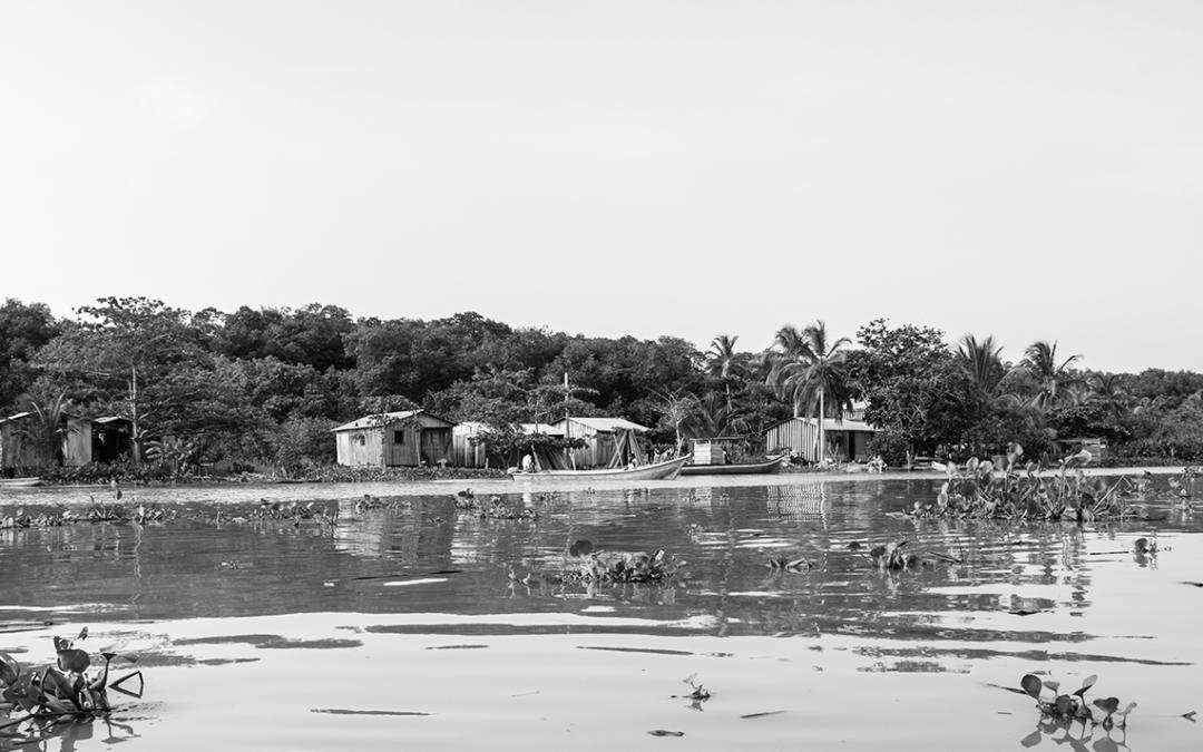 Humanitäre und Menschenrechts-Krise im Chocó dauert an: 2 Berichte internationaler Menschenrechtsorganisationen und -netzwerke